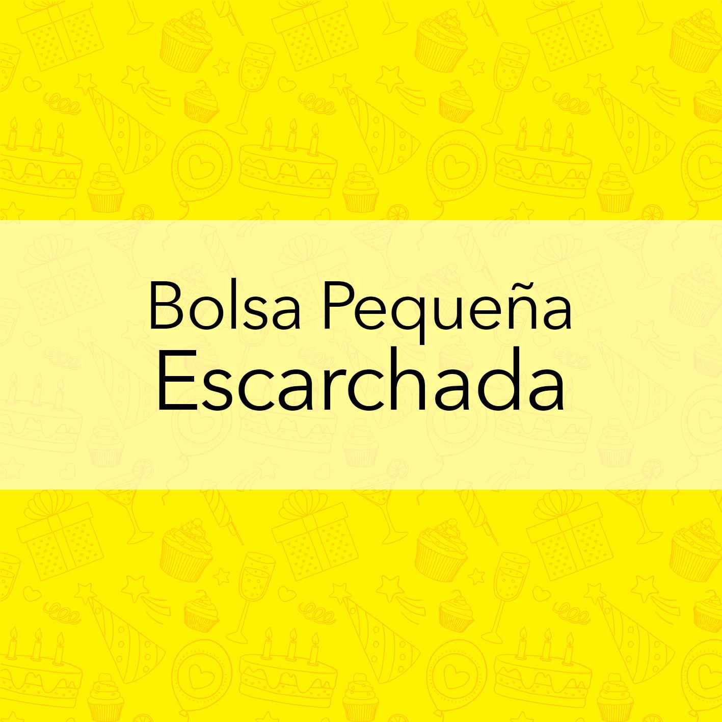 BOLSA PEQUEÑA ESCARCHADA