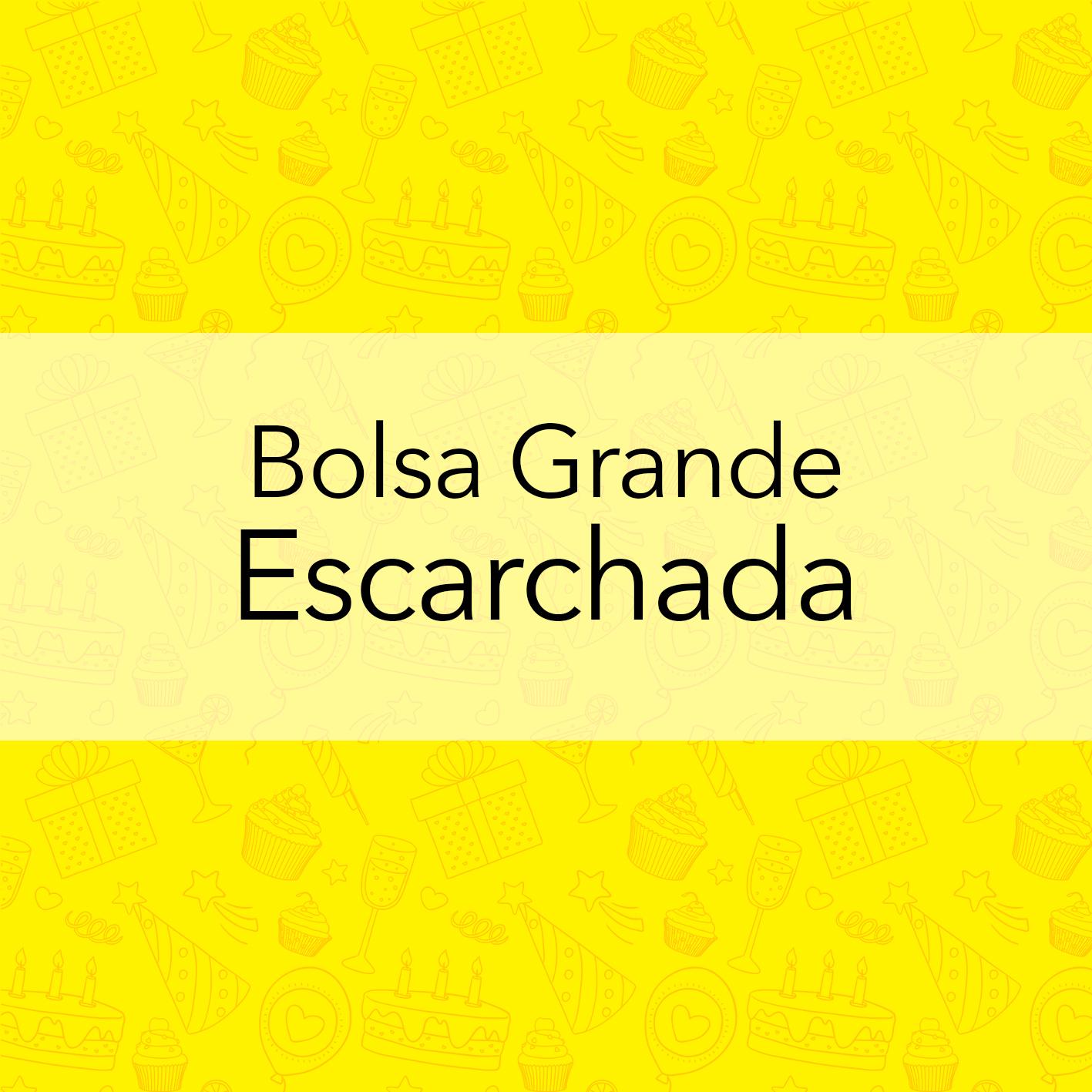 BOLSA GRANDE ESCARCHADA