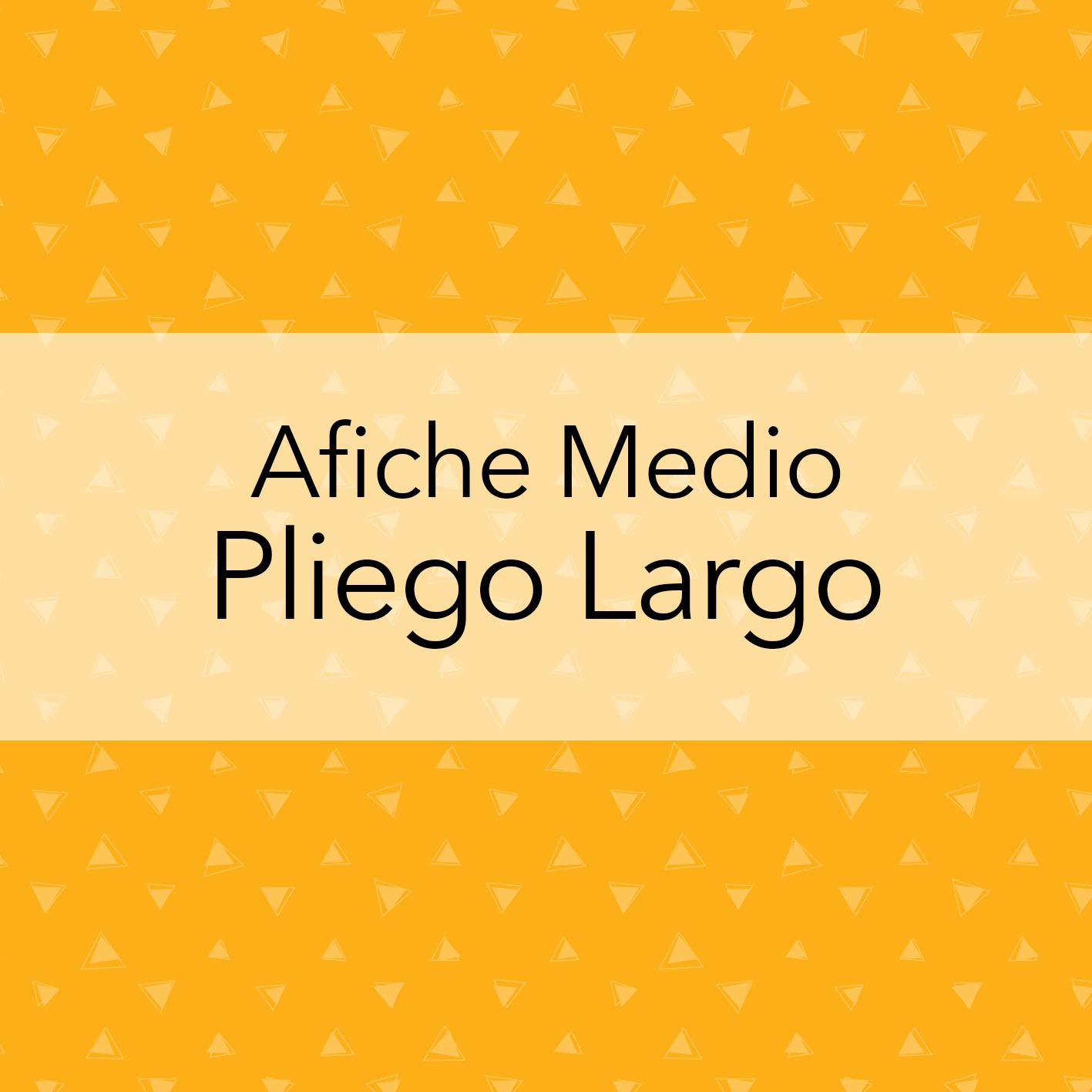 AFICHE MEDIO PLIEGO LARGO
