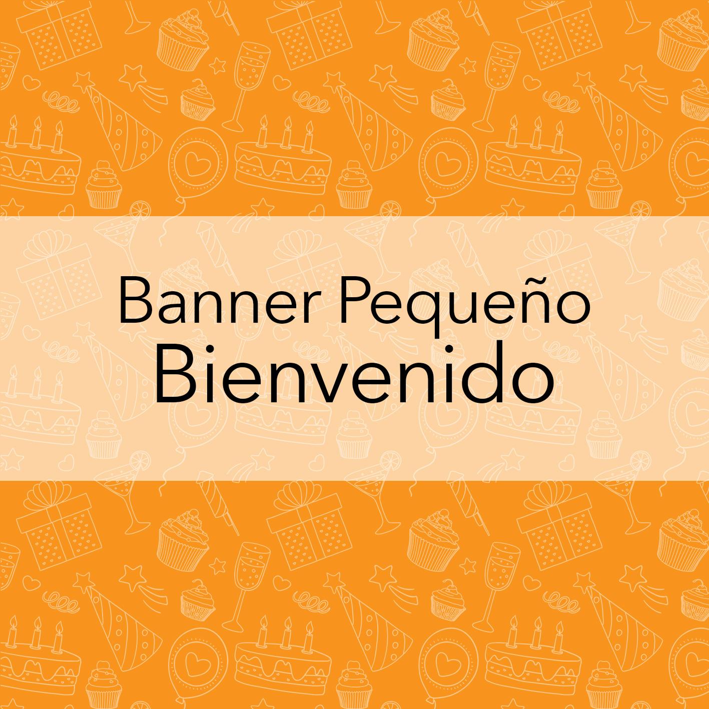 BANNERS PEQUEÑOS - BIENVENIDOS