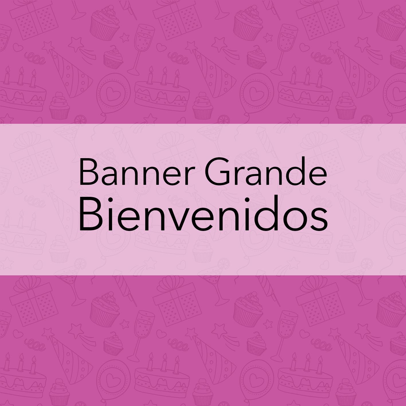 BANNERS GRANDES - BIENVENIDOS
